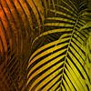 TROPICAL LEAVES GREEN MOCCA no4 van Pia Schneider thumbnail