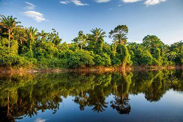 Uitzicht op de Suriname rivier van Marcel Bakker