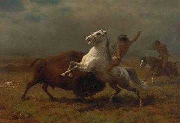 Albert Bierstadt-Studie für den letzten der Büffel