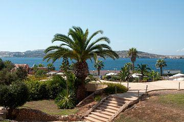 malta eiland van Compuinfoto .