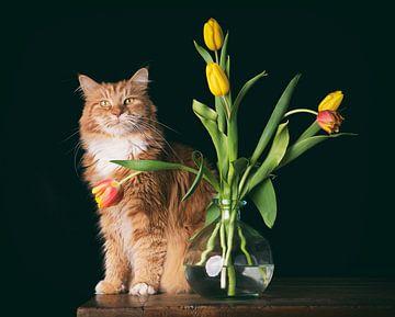 Ivar en zijn tulpen van mirka koot