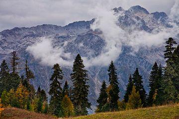 Hoge strenge stenen berg (rotsachtige berg) torens in stukjes wolken, op de voorgrond gegeten, sober van Michael Semenov