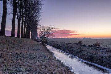 Een koude ochtend in het Groninger land van