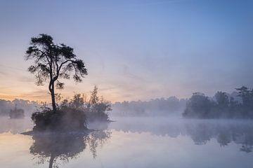 Ein friedliches Nachglühen von Peter Nolten