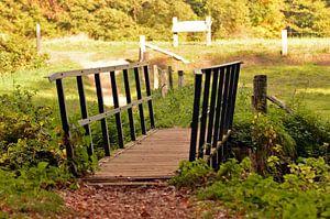 Kleine brug in mooi landschap bij Vorden, Gelderland van