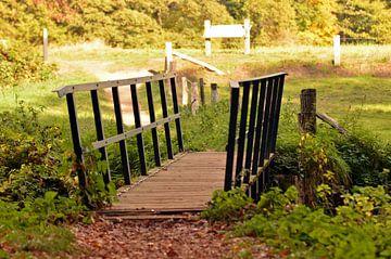 Kleine brug in mooi landschap bij Vorden, Gelderland van Jaimy Buunk