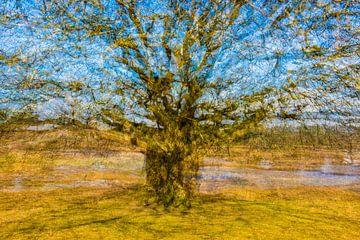 Vincent van Gogh boom van Marjan van Herpen