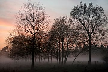 Avondmist in een winters landschap van Hanneke Luit