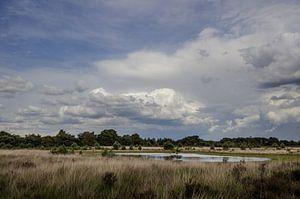Wolken boven de Kampina van