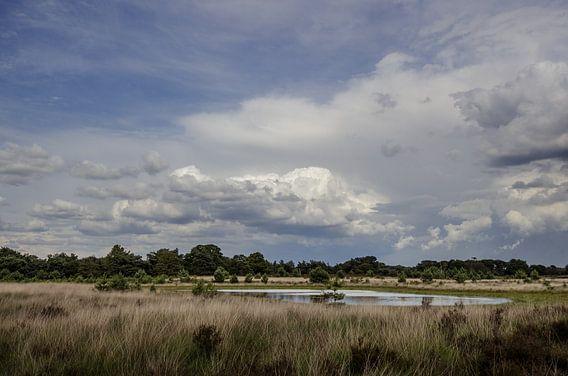 Wolken boven de Kampina