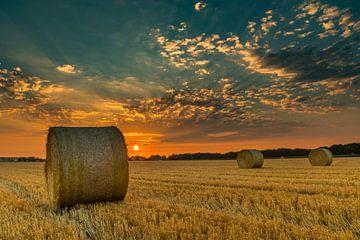Strorollen in een gedorst graanveld bij zonsondergang van Fred van Bergeijk