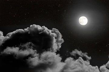 Bij volle maan II von Corinne Welp