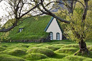 Huisje met grasdak