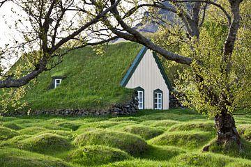 Huisje met grasdak von Veronie van Beek