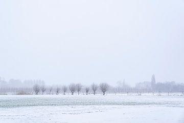 Schnee in der Landschaft mit einer Reihe von Kopfweiden. von Lieke van Grinsven van Aarle