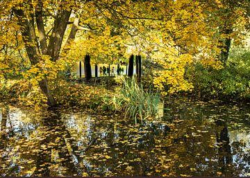Bos doorkijk Kralingse bos Roterdam van Gini Roth