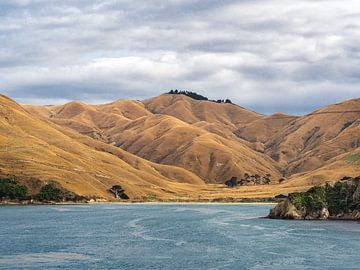 Het Zuidereiland van Nieuw-Zeeland in zicht van Rik Pijnenburg
