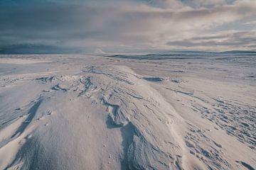 Winter wonderland van Joris Machholz