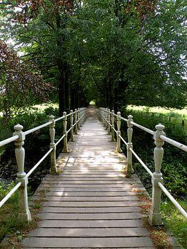 De weg naar..... ? sur Sasja Giezenberg