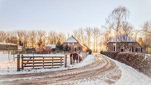 Sneeuw boerderijen
