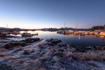 Idyllisch ochtendlicht op aanlegsteiger in Langoya, Noorwegen van Patricia Dhont