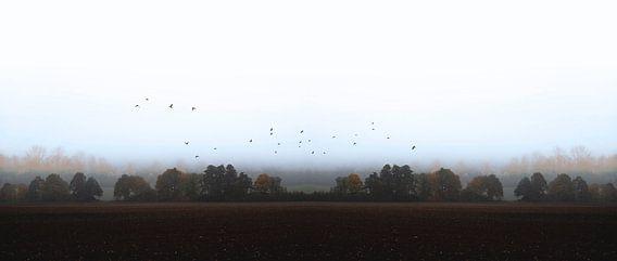 MISTY OCTOBER DAY-VI van Pia Schneider