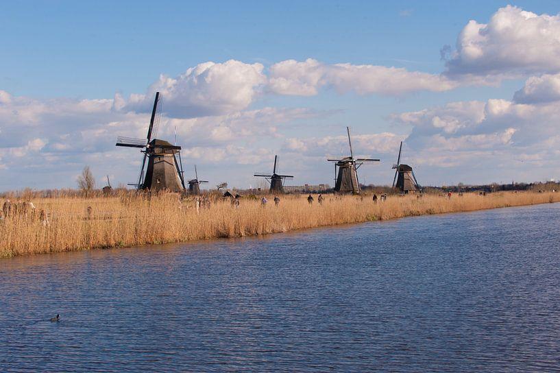 Holland Windmills van Brian Morgan