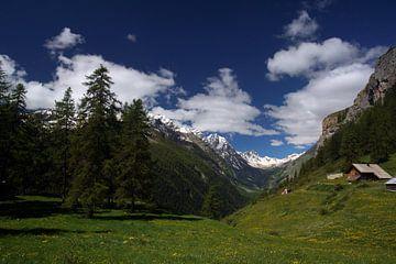 Französische Alpen von Wim Frank