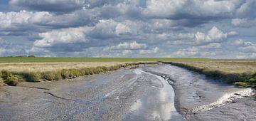 Salzwiesen bei Westerhever von Peter Eckert