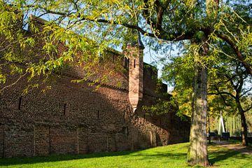 Stadtmauer Amersfoort von Alejandro Vivas