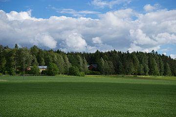 Finnische Landschaft von Martijn Stoppels