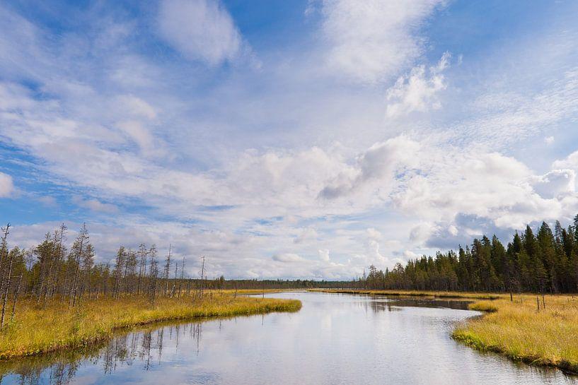 Uitzicht over wijds landschap met beek van Caroline Piek