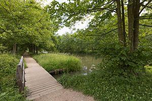 Bruggetje langs de Kromme Rijn bij Amelisweerd
