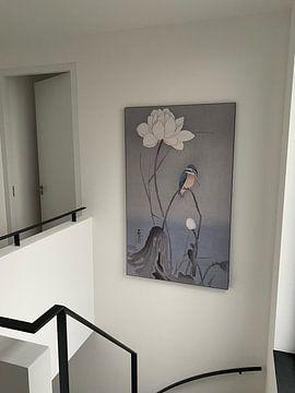 Klantfoto: IJsvogel zittend op gebogen stengel bij witte lotusbloem van Ohara Koson
