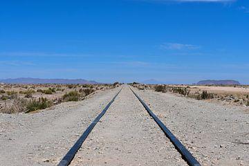 Spoorlijn van Oscar Leemhuis
