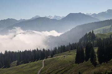 Nebel in den Bergen von Sasja van der Grinten