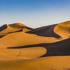 Sahara ; très Chegaga sur Bep van Pelt- Verkuil