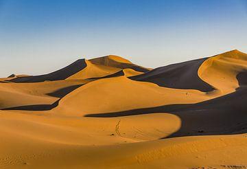 Sahara; zandduinen in ochtendzon van Bep van Pelt- Verkuil