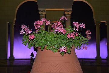 grote vaas met prachtige rose bloemen von Gerrit Neuteboom