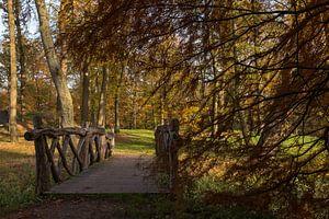 paysage avec un pont en bois en automne dans la forêt