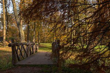 Landschaft mit einer Holzbrücke im Herbst im Wald von Compuinfoto .