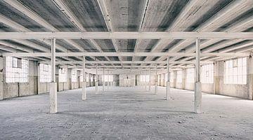 Verlassene Orte: Sphinx Fabrik Maastricht Eiffel Gebäude Säulen und Sparren sur Olaf Kramer
