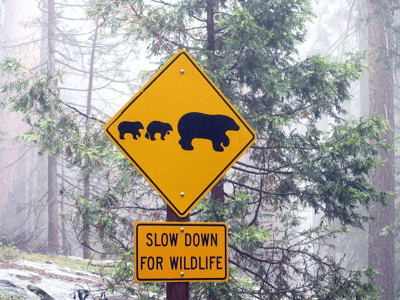 Slow down for wildlife, Verenigde Staten van Mr and Mrs Quirynen