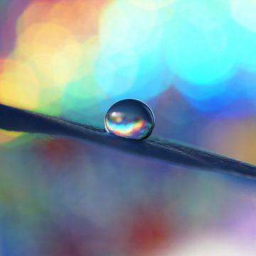 Regenboog von Kayleigh van der Lee