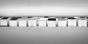 Collective Freedom van Niels Devisscher