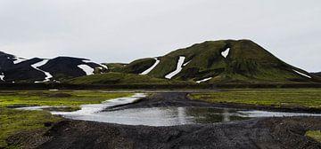 Wegen en rivieren | IJsland (3) van Willem van den Berge