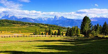 Panoramablick auf der Villanderer Alm - Südtirol von Gisela Scheffbuch