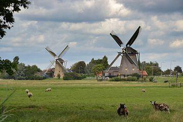 Twee molens in Maasland van Rob Pols