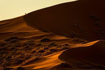 Goldene Wüste von Richard Guijt Photography