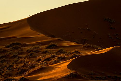 Goldene Wüste von